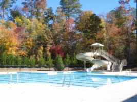 Brighton Forest Subdivision Pool